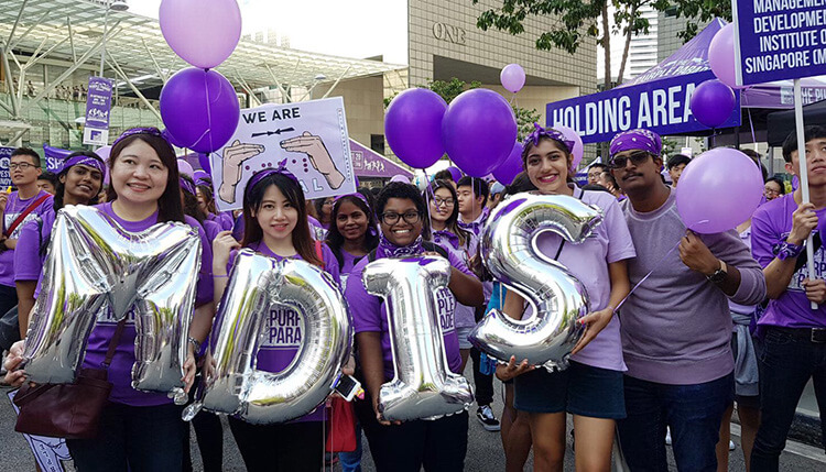 MDIS Purple Parade