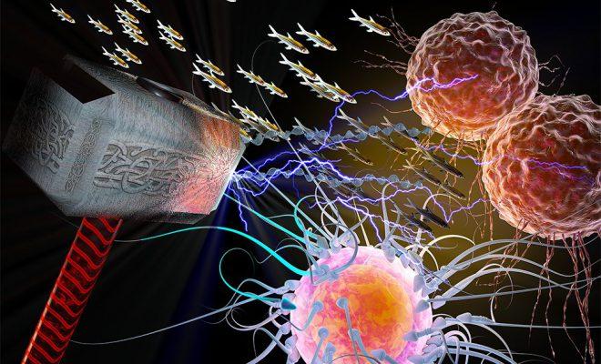 thor cancer gen